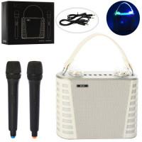 Микрофон X15316 (2шт) 2шт,аккум/от сети,св,Bluetooth,TF,USB,MP3,запись,2цв, в кор-ке, 27-21,5-14,5см