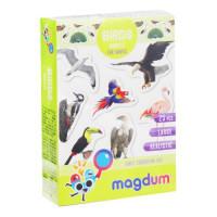 """Набір магнітів """"Птахи фото"""" ML4031-30 EN"""