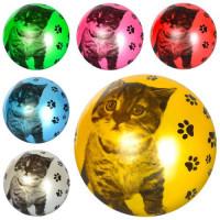 Мяч детский MS 1591 (120шт) 9дюймов, кот, рисунок, 1вид, 6цветов, 60-65г